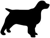 Medium Dog Collars