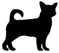 X-Small Dog Collars
