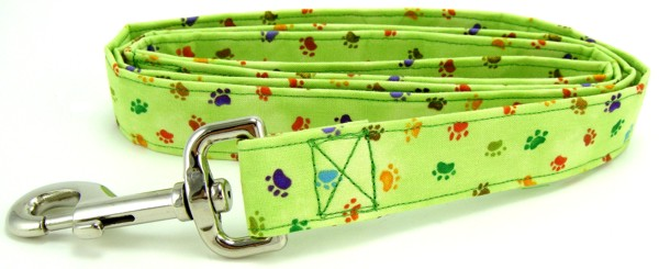 Green Rainbow Paws Dog Leash
