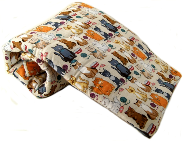 Sly Cat Pet Blanket