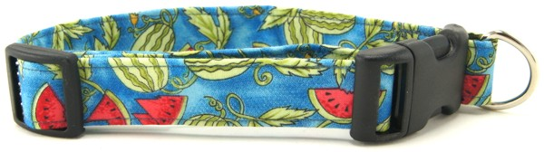 Watermelon Patch Dog Collar